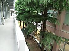 Cimg82681