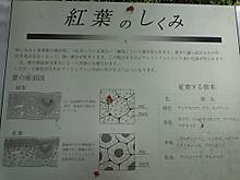 Dsc04903_1
